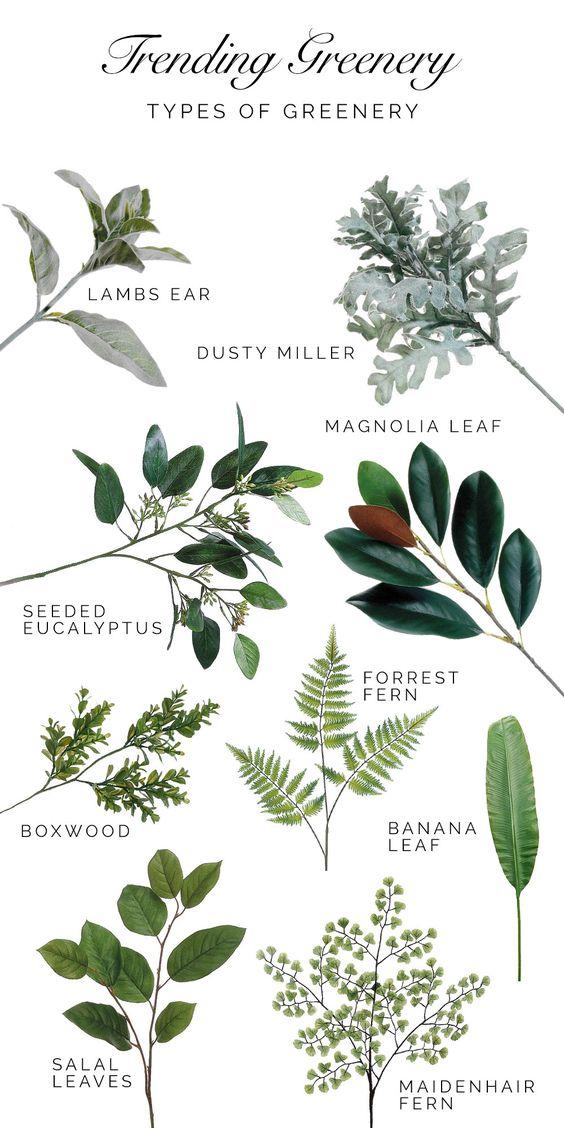 Pantone greenery, 2017 trend