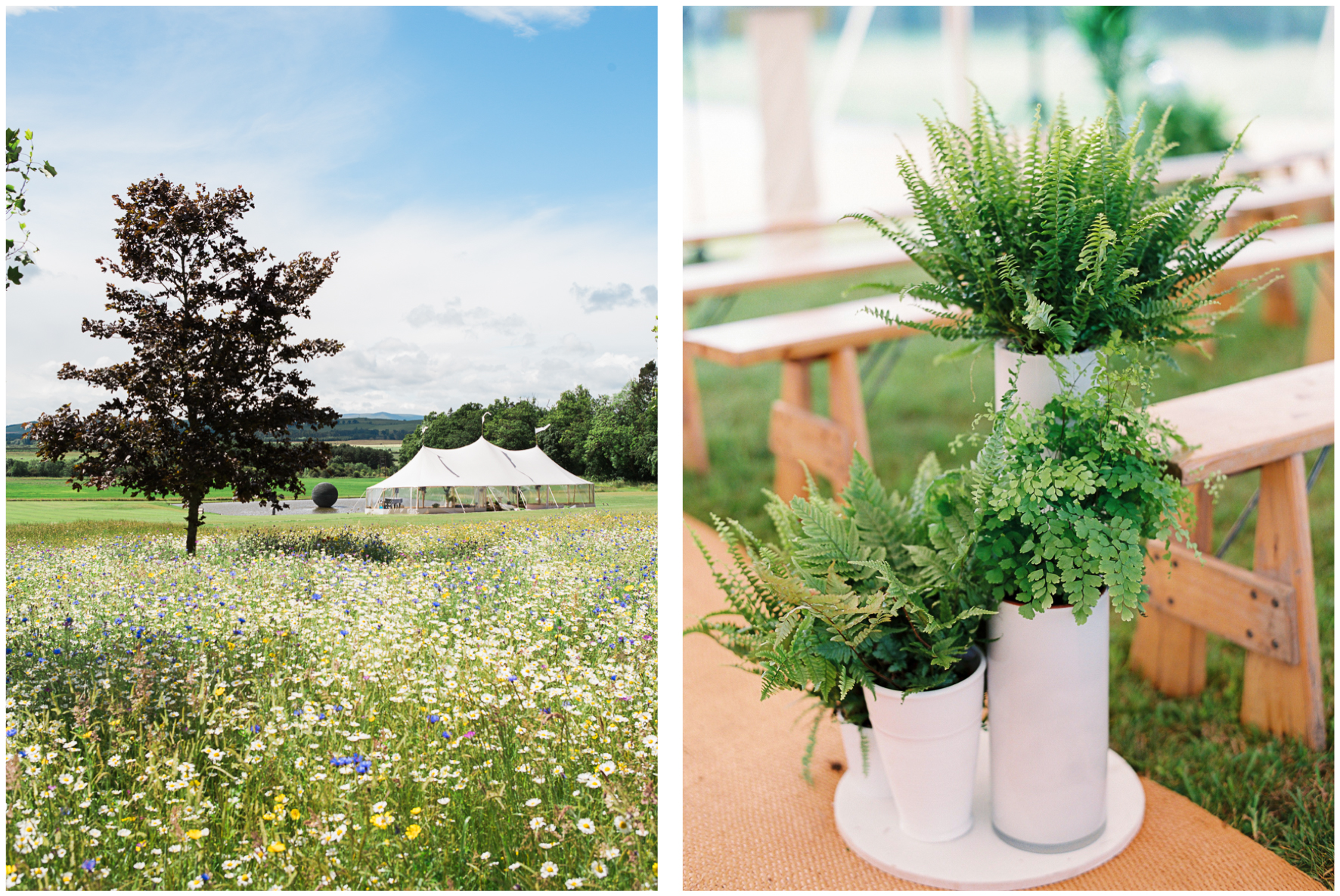 PapaKata sperry tent, wild meadow, outdoor wedding