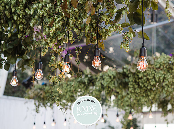 Hanging hops, edison lights, clear marquee