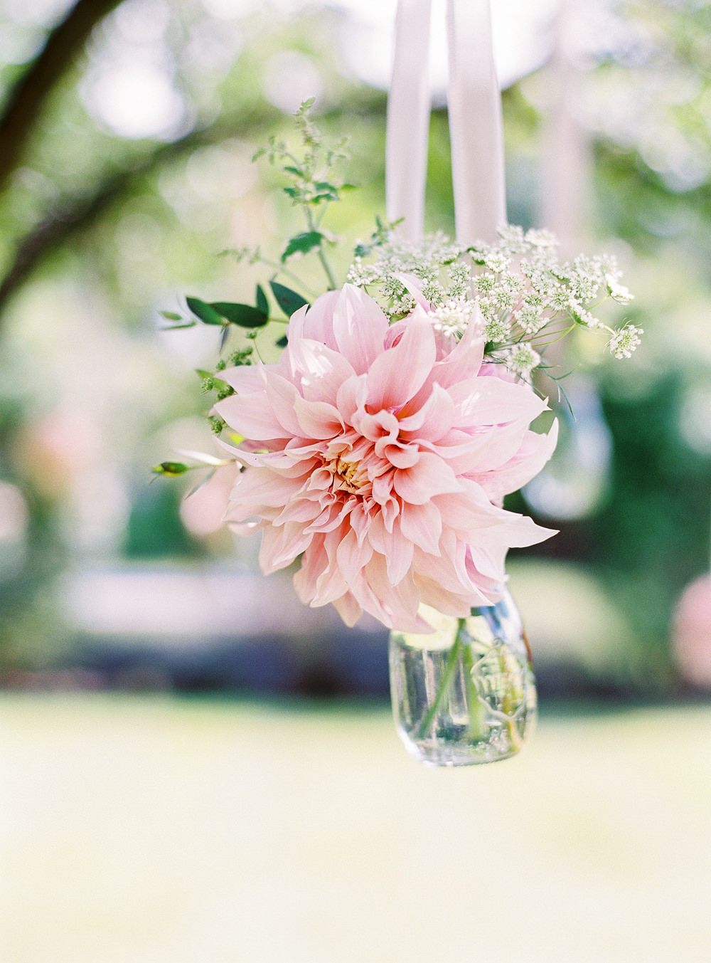 Dahlias suspended in glass vase
