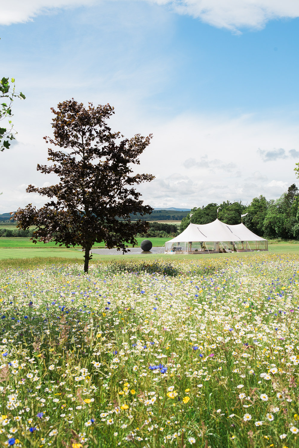 PapaKata Sperry tent in wild flower meadow