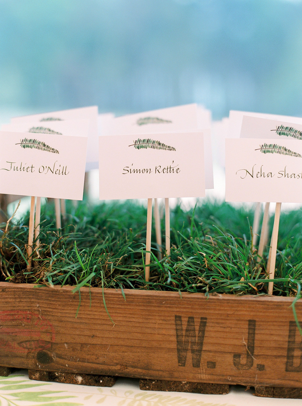 Escort cards in grass display