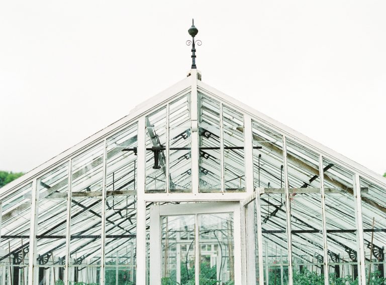 Clovelly greenhouse