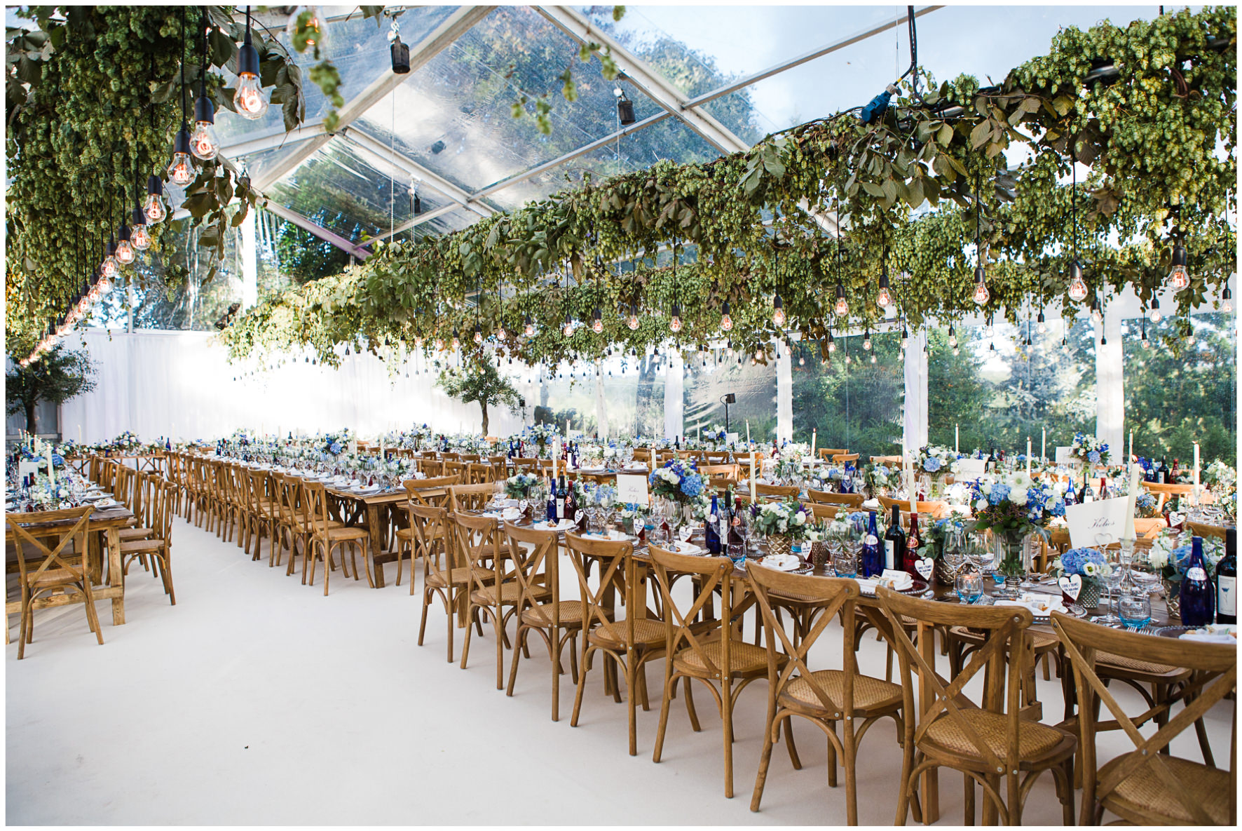 Lucy Davenport Photography, home wedding, marquee wedding, hanging hops, Edison bulb lighting, long tables, wedding breakfast, clear marquee