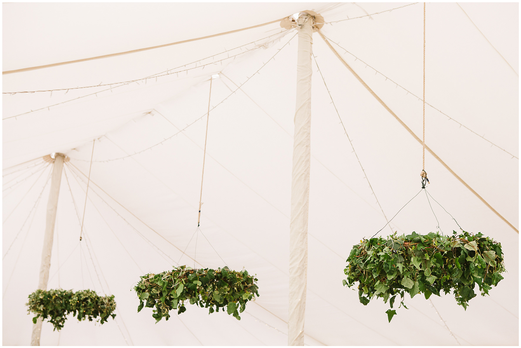 Suspended greenery from marquee